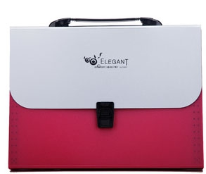 Elegant A4 Box File  F8807