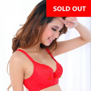 Adjustable front buckle bra