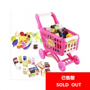 Kid's shopping cart and groceries