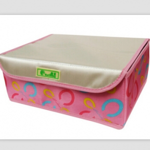 Intimate Storage Box Organizer With Cover