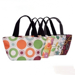 Assorted design Waterproof small lunch bag
