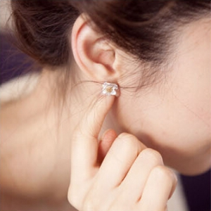 B894 Crystal Flower Earrings